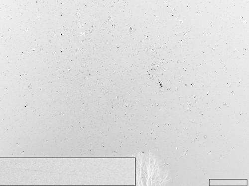 http://astro.gligor.net/2009/12/meteor-leonide-2009/